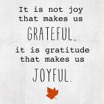 Sunday Encouragement: Grateful {11.24.13}