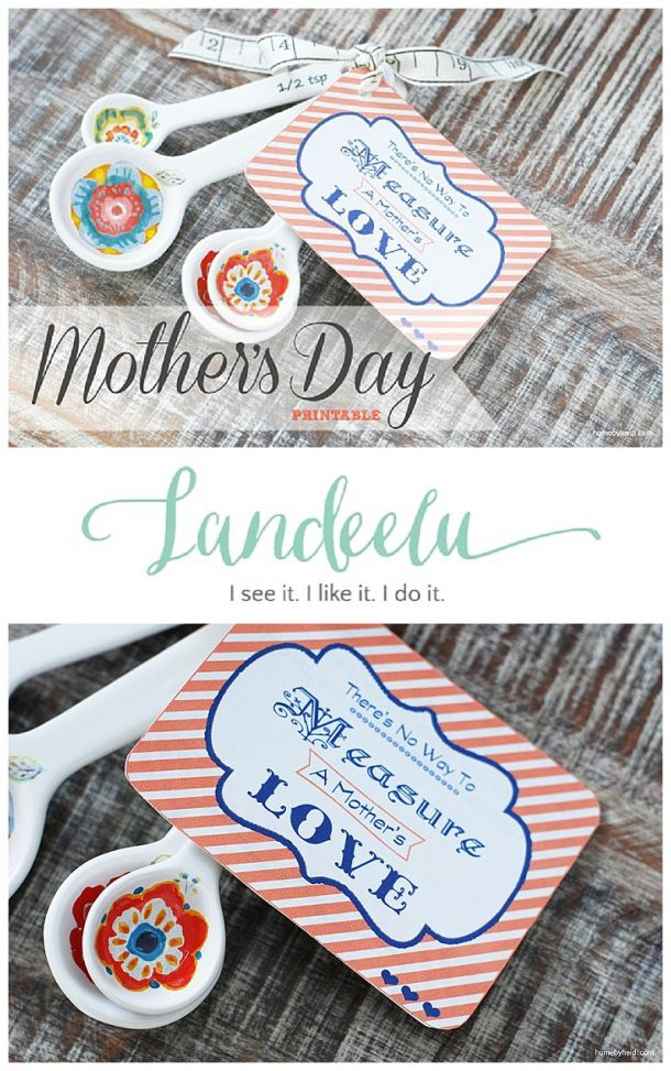 """Mother's Day Gift DIY Idea and FREE Printable - """"There is no way to MEASURE a MOTHER'S LOVE"""" - attach to measuring spoons or cups! Such a thoughtful Mother's Day gift!"""