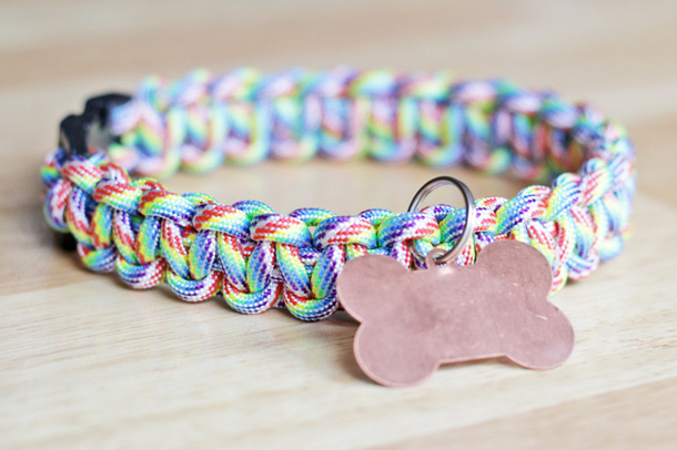 Make Dog Collar From Paracord