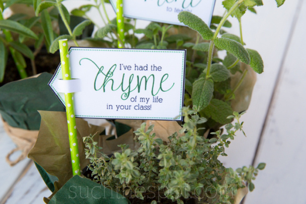 DIY Paper Crafts Project Free Printable Herb Tags Teacher Appreciation Gift Ideas with FREE Printable Tags