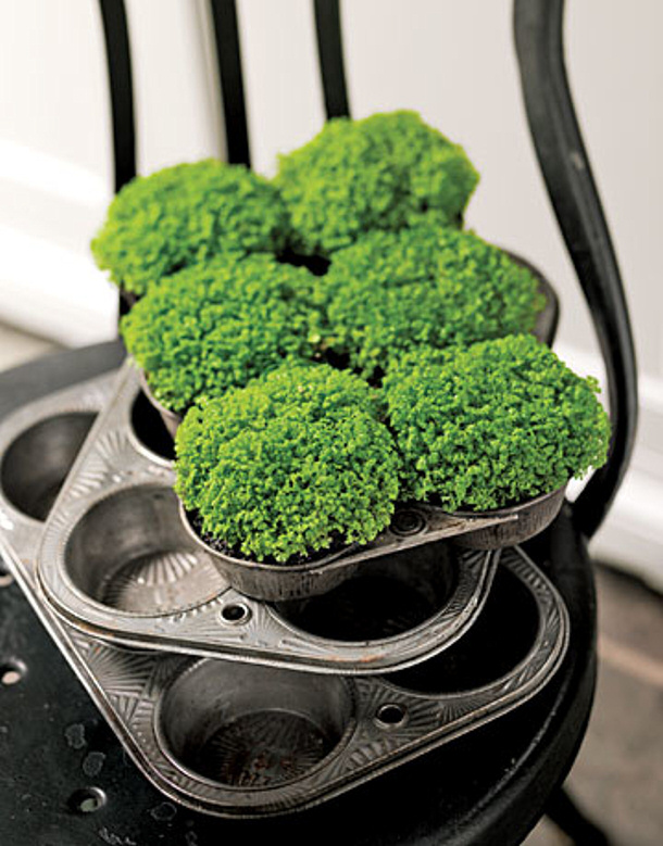 Muffin Tins Centerpiece Country Living