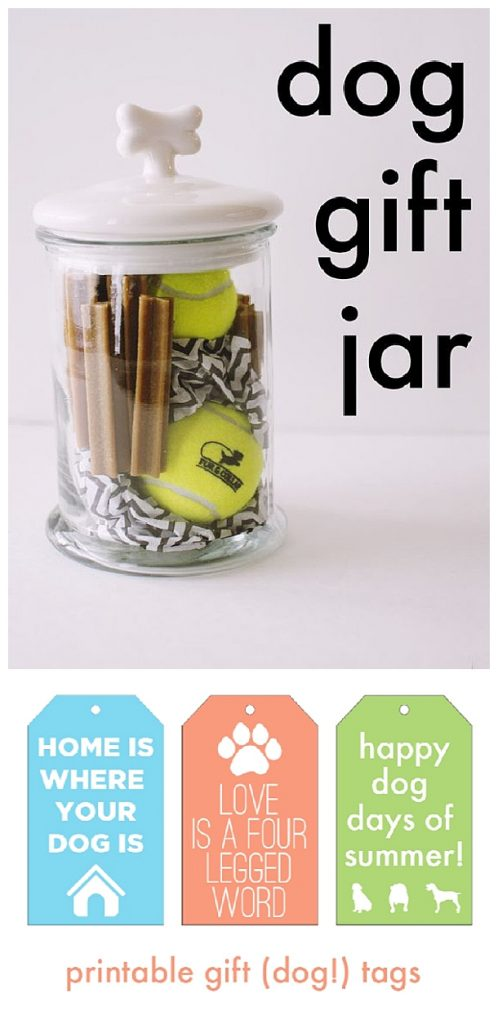 Do it Yourself Gift Basket Ideas for all Occassions - Dog Gift Jar Idea via AJ Wears Clothes