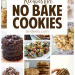 20+ No Bake Cookies Recipes