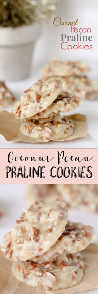 http://www.landeeseelandeedo.com/wp-content/uploads/2016/07/No-Bake-Cookies-Recipes-No-Bake-Coconut-Pecan-Praline-Cookies-Recipe-via-Confessions-of-a-Cookbook-Queen.jpg