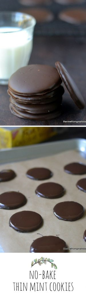 No Bake Cookies Recipes - No Bake Thin Mint Cookies Recipe via The View from Great Island