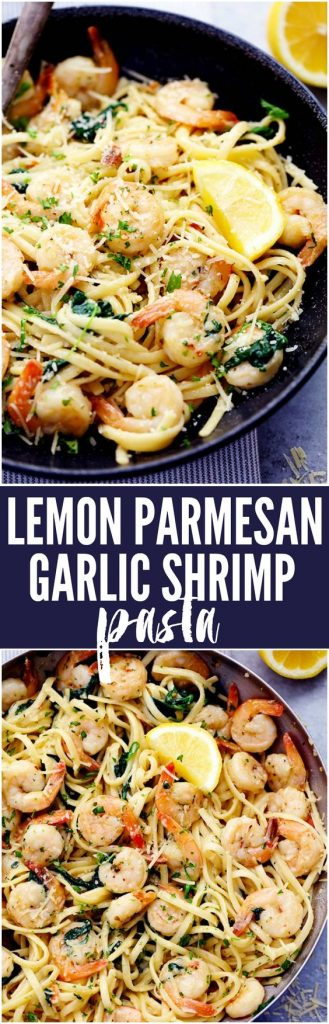 One Pot Lemon Garlic Parmesan Shrimp Pasta Recipe | The Recipe Critic