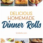 Delicious Homemade Dinner Rolls You Will LOVE